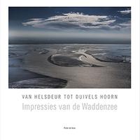 Boek Pieter de Vries - Van Helsdeur  tot Duivelshoorn
